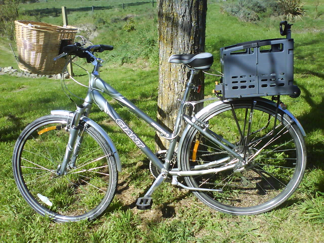 My lovely new bicycle