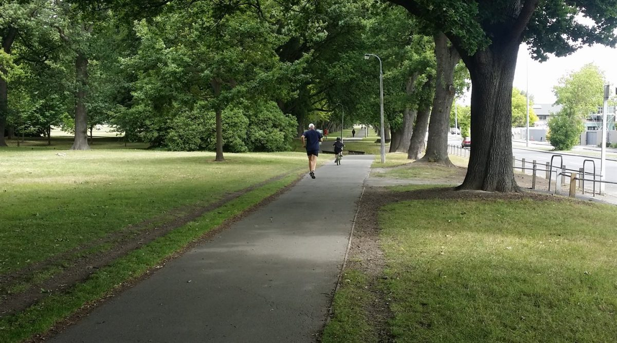 Not-so-hidden Treasures: Hagley Park
