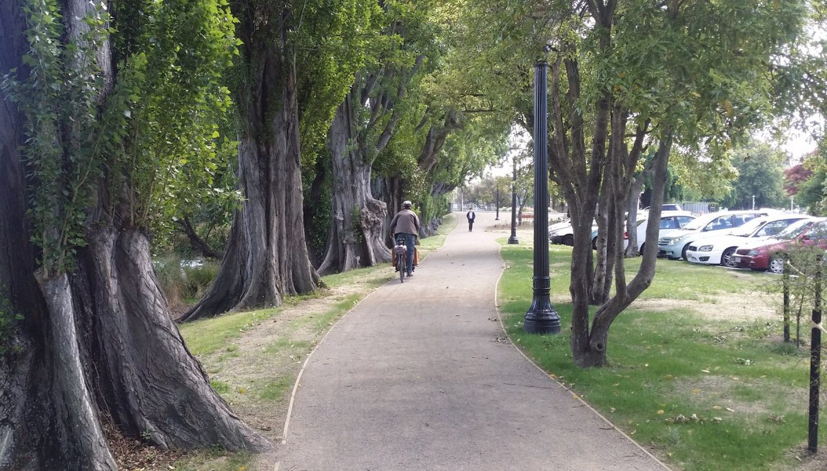 Photo of the Day: Avon River Precinct path