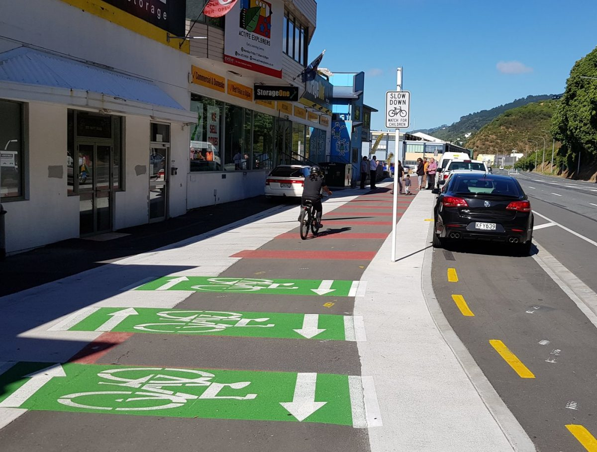 Photo of the Day: Wellington Hutt Road cycleway