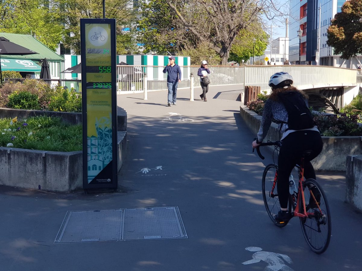 Do cycle counters only count bikes?