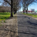 Photo of the Day: South Hagley Park perimeter path